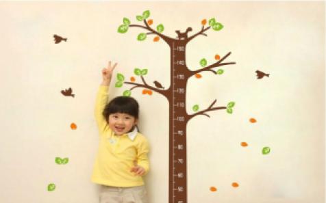 Xà đơn cho trẻ em – Dụng cụ rèn luyện sức khỏe và phát triển chiều cho trẻ